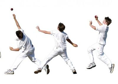 CricketMontage2