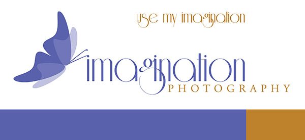 Imagination Photography Logo Master 10 2D